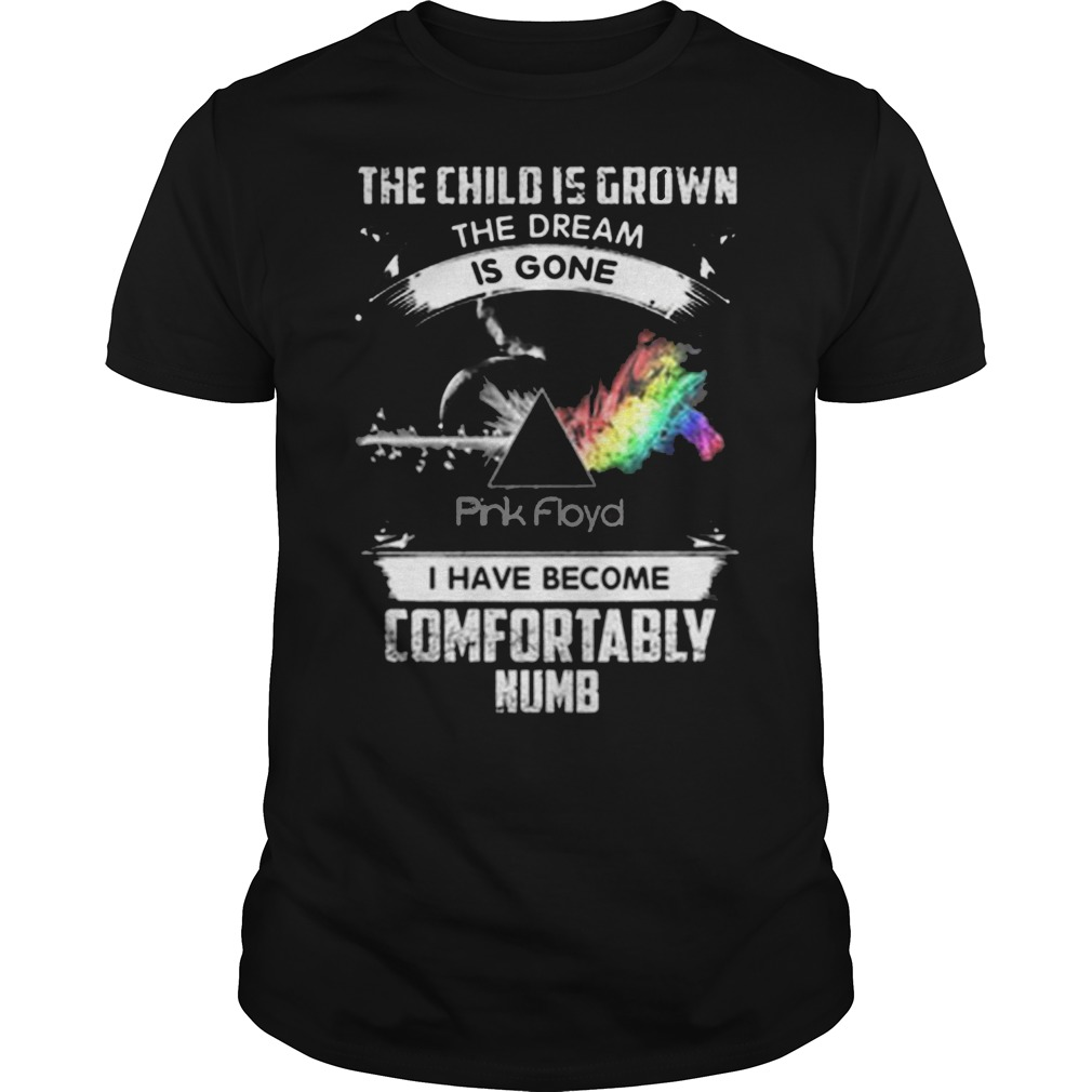 The child is grown the dream is gone pink floyd I have become comfortably numb shirt