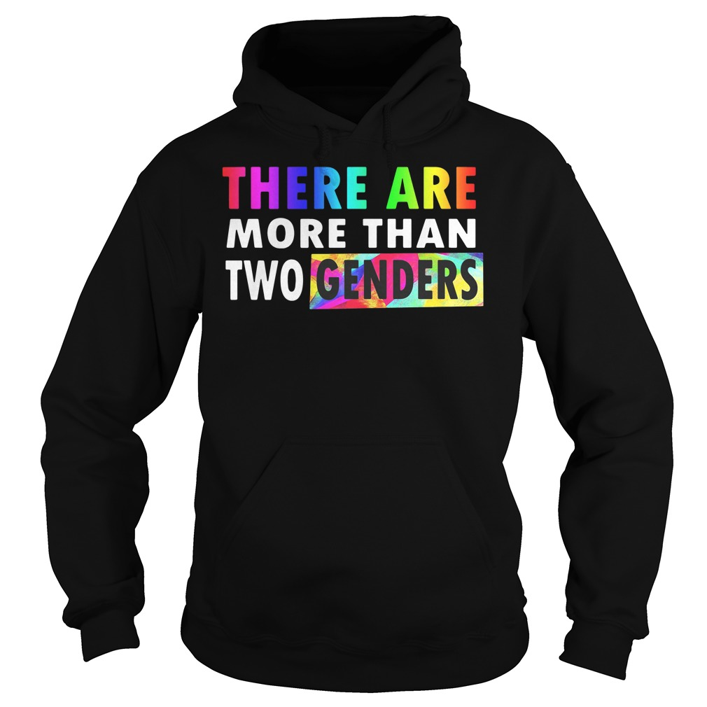 LGBT there are more than two genders hoodie