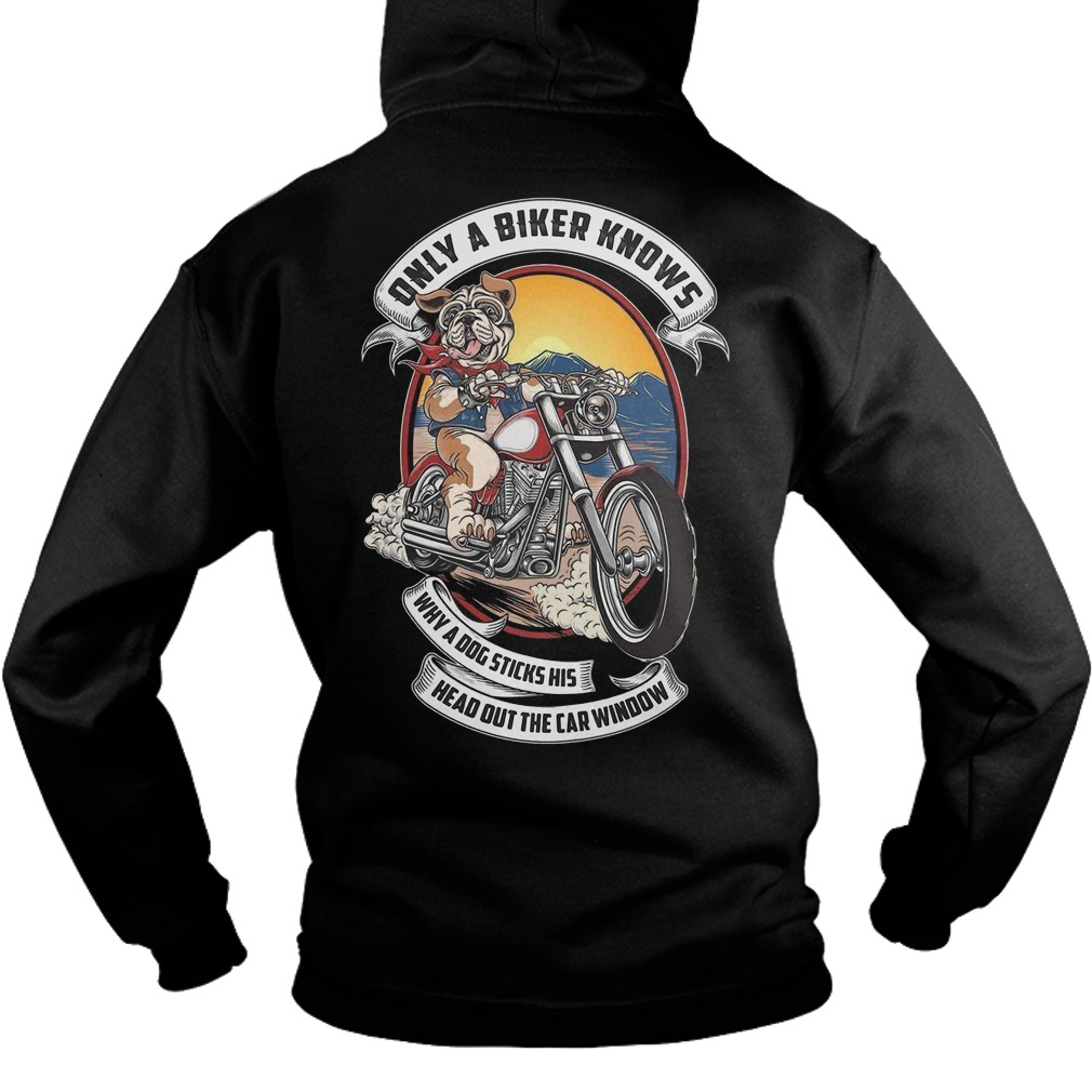 Pitbull only a biker knows why a dog sticks his head out the car window hoodie