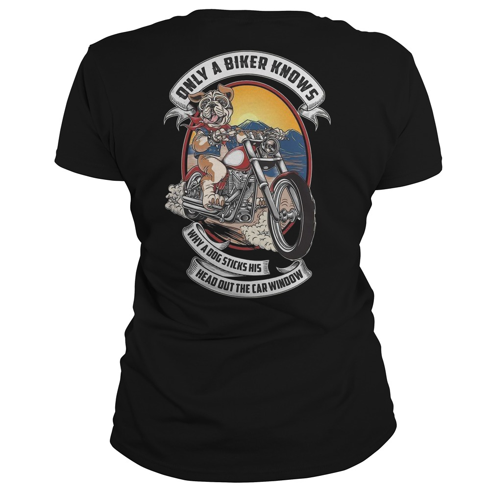 Pitbull only a biker knows why a dog sticks his head out the car window ladies shirt
