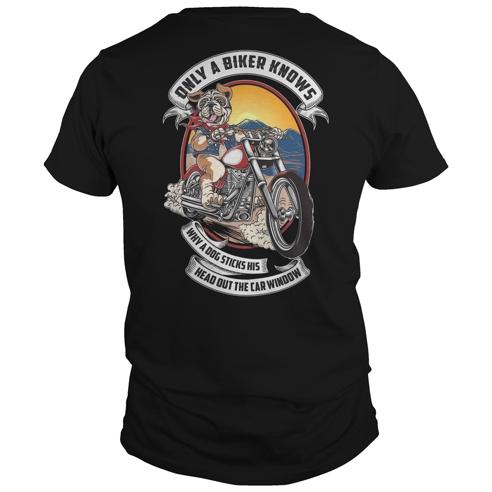 Pitbull only a biker knows why a dog sticks his head out the car window shirt
