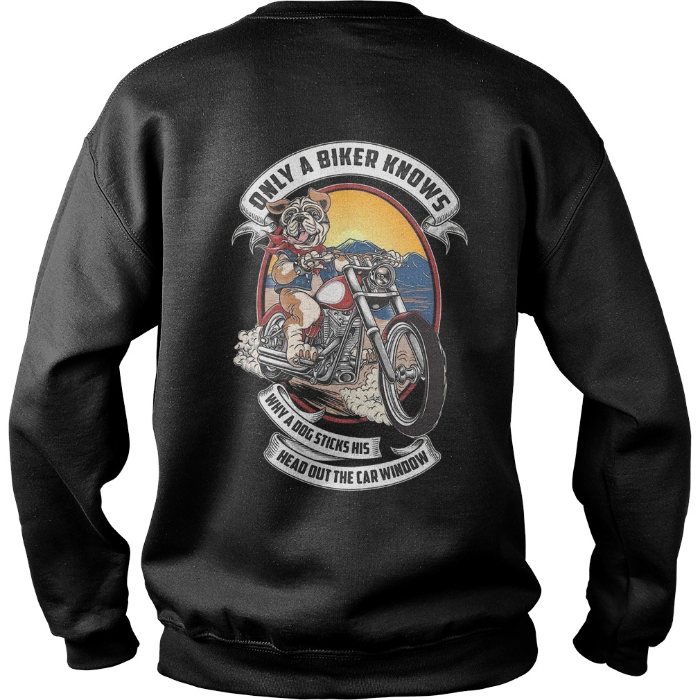 Pitbull only a biker knows why a dog sticks his head out the car window sweater