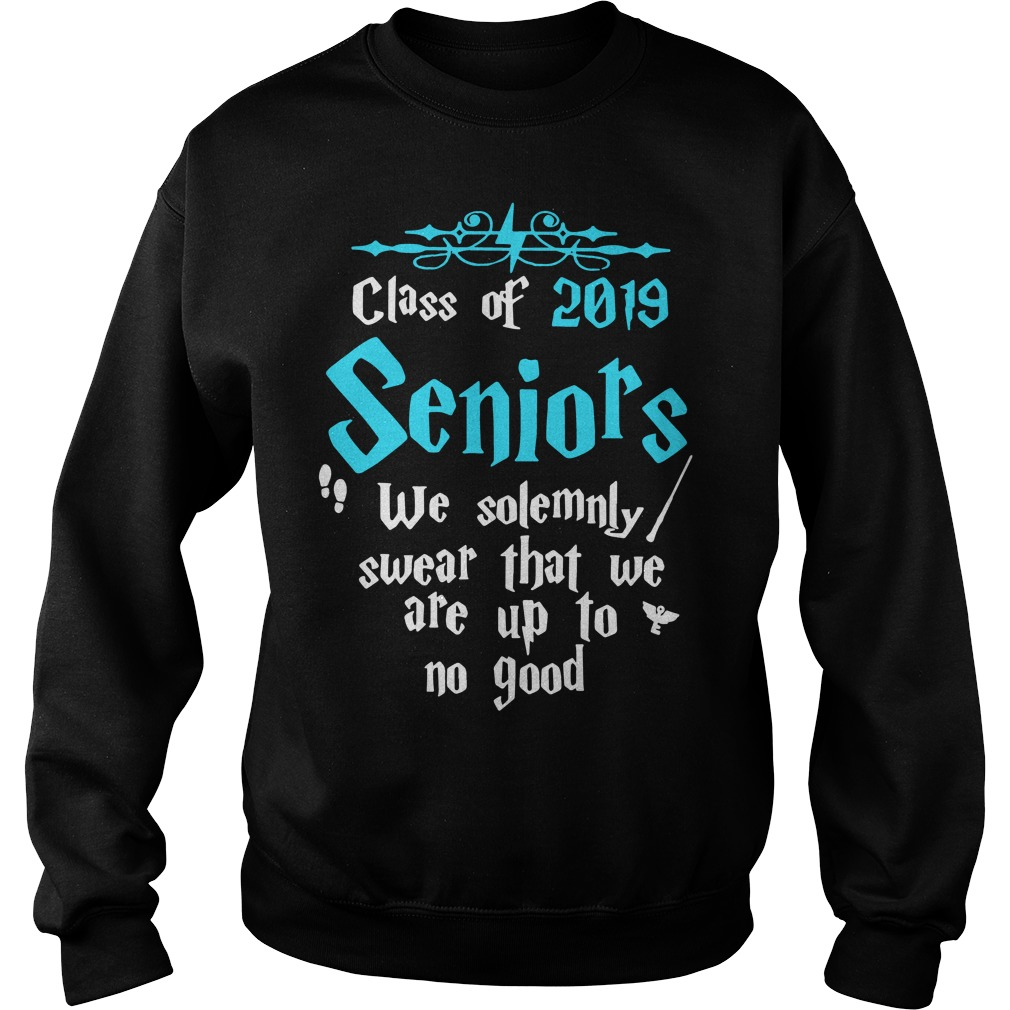 Class of 2019 senior we solemnly swear that we are up to no good sweater